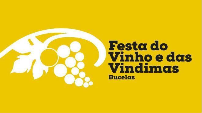 Festival do Vinho e das Vindimas